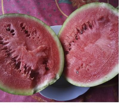 Семена Арбуз ультраранний сахарный БЛЭЙД (5 семян)